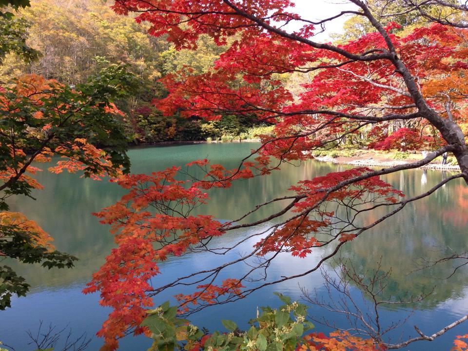 紅葉のドッコ沼③ (002)